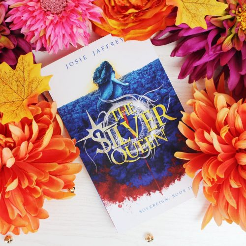 Cosy Up With A Book: The Silver Queen by Josie Jaffrey